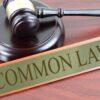 Common Law Kindergarten Part 1  Will Keyte