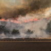 Climate change is not driving U.S. wildfires – Government mismanagement is to blame